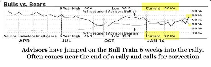 bulls v bears